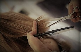 Trichologist Brisbane Organic Hair Salon Hair Cutting Service